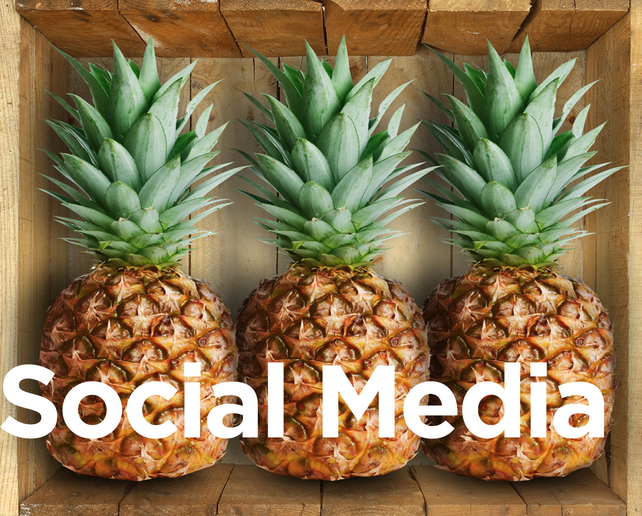 Social Media Western Cape