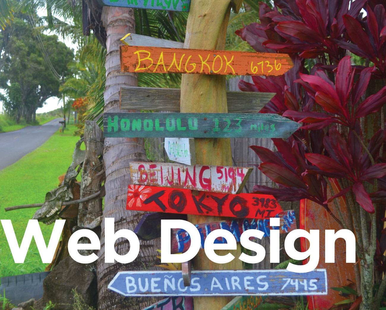 web design west cape website designer in Fish hoek